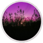 Purple Paradise Sunset By Diana Sainz Round Beach Towel