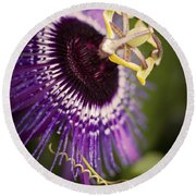 Purple Passion Flower Round Beach Towel