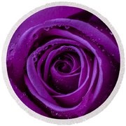 Purple Rose Close Up Round Beach Towel