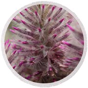 Purple Spike Round Beach Towel