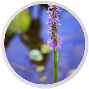Purple Swamp Flower Round Beach Towel