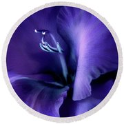 Purple Velvet Gladiolus Flower Round Beach Towel by Jennie Marie Schell