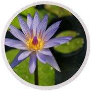 Purple Water Lily Round Beach Towel