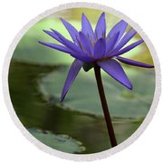 Purple Water Lily In The Shade Round Beach Towel