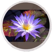 Purple Waterlily With Fall Lilypads Round Beach Towel