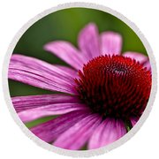 Purples And Reds Round Beach Towel
