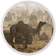 Pushkar Camel Fair - India Round Beach Towel