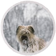 Pyrenean Shepherd Dog Round Beach Towel