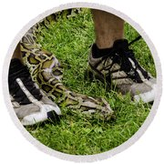 Python Snake In The Grass And Running Shoes Round Beach Towel