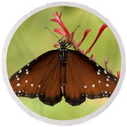 Queen Butterfly Round Beach Towel
