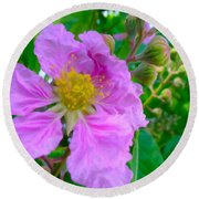 Queen Flower Or Giant Crepe Myrtle Flower Round Beach Towel by Lanjee Chee