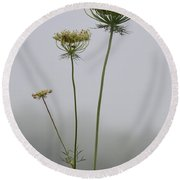 Queen's Lace On A Foggy Morning Round Beach Towel