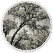 Quercus Suber Retro Round Beach Towel