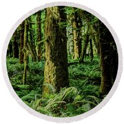 Quinault Rainforest Round Beach Towel