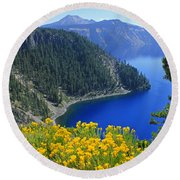 D2m5622-rabbit Brush At Crater Lake Round Beach Towel