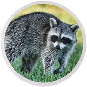 Raccoon Buddy Round Beach Towel