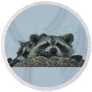 Raccoons Painterly Round Beach Towel