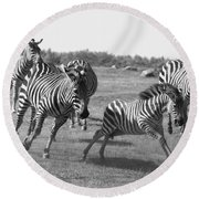Racing Zebras 1 Round Beach Towel
