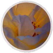 Radiance Round Beach Towel by Cathleen Cario-Reece