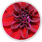 Radiant In Red - Dahlia Round Beach Towel