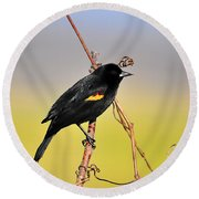 Radiant Red-winged Round Beach Towel