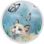 Ragdoll Kitty And Butterflies Round Beach Towel