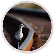 Railroaded Willet  Round Beach Towel