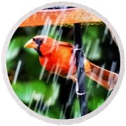 Rain Bird Round Beach Towel