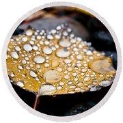 Rain Drops On Autumn Birch Leaf Round Beach Towel