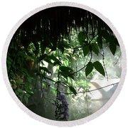 Rain Forest Overhang Round Beach Towel