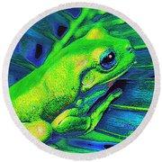 Rain Forest Tree Frog Round Beach Towel