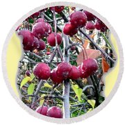 Rain On The Crab Apples Round Beach Towel