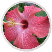 Rain Soaked Hibiscus Round Beach Towel