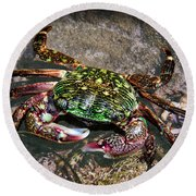 Rainbow Crab Round Beach Towel