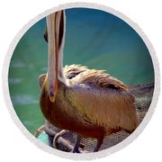 Rainbow Pelican Round Beach Towel by Karen Wiles