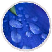 Raindrop Pansy Round Beach Towel by Anne Gilbert