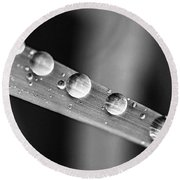 Raindrops On Grass Blade Round Beach Towel
