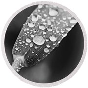Raindrops On Grass In Black And White Round Beach Towel