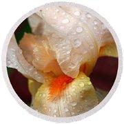 Raindrops On Orange Iris Round Beach Towel