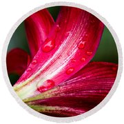 Raindrops On Red Petals Round Beach Towel