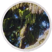 Rainforest Cover Round Beach Towel