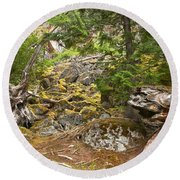 Rainforest Rock Slide Round Beach Towel
