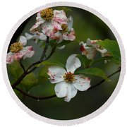 Rainy Day Dogwood Round Beach Towel