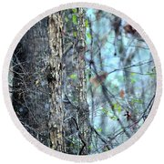 Rainy Day In The Forest Round Beach Towel