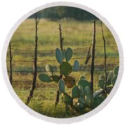 Ranch Cactus Round Beach Towel