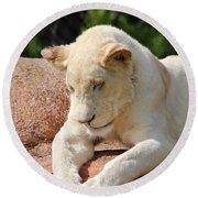 Rare Female White Lion Round Beach Towel