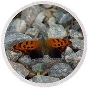 Rarely-sighted Butterfly Species Round Beach Towel