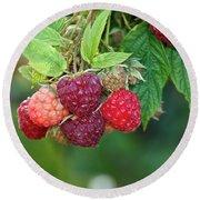 Rasberries Round Beach Towel