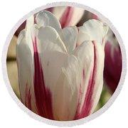 Raspberry Vanilla Tulip Round Beach Towel