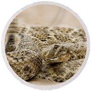 Rattlesnake 1 Round Beach Towel